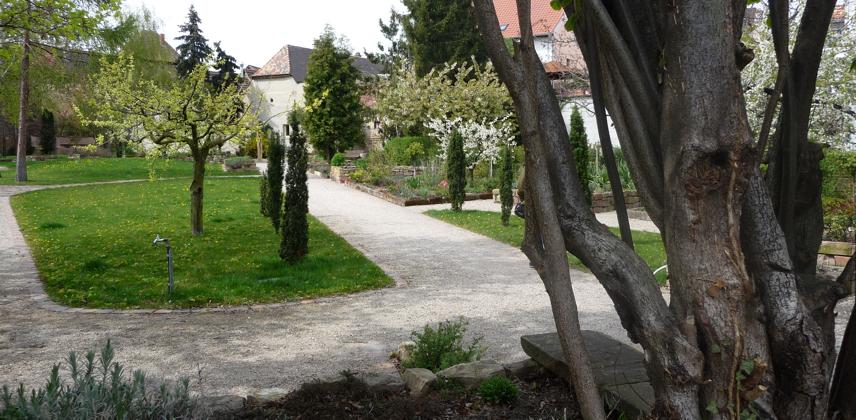 Freinsheim Apothekergarten Jost-Mocker